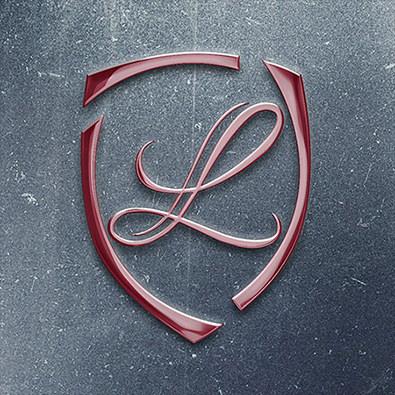 LIDIS – logo & website for safety equipment retailer